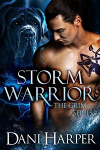 cover_storm_warrior