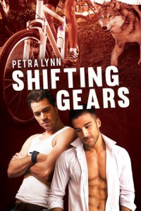 Review – Shifting Gears by Petra Lynn