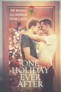 Review – One Holiday Ever After by Various