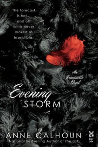 cover_evening-storm