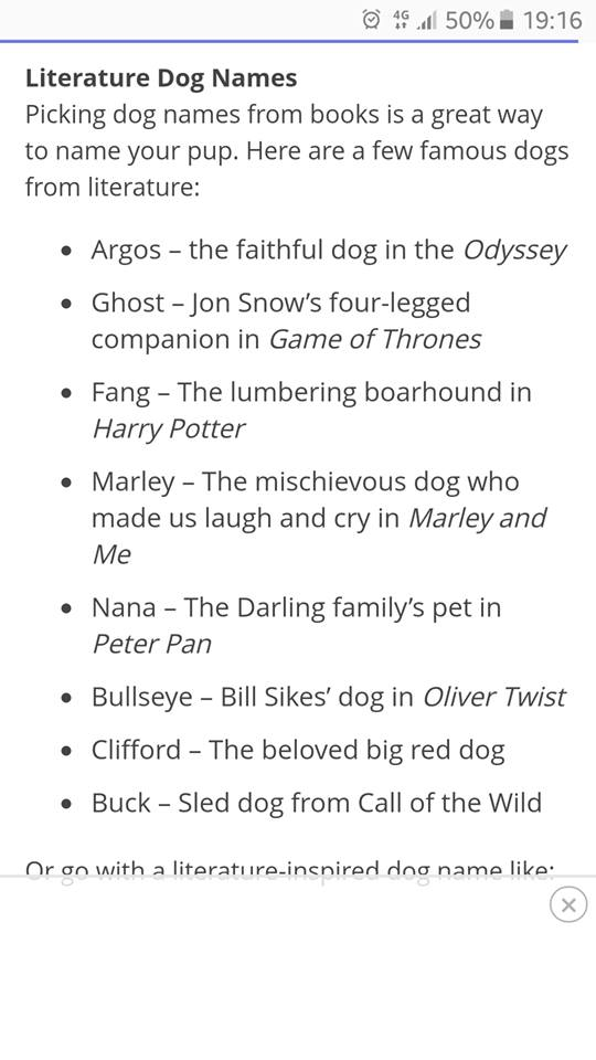 Image may contain: text that says '50% 19:16 Literature Dog Names Picking dog names from books is great way name your pup. Here are few famous dogs from literature: Argos the faithful dog in the Odyssey Ghost Jon Snow's four-legged companion in Game Thrones Fang The lumbering boarhound in - Harry Potter Marley The mischievous dog who made us laugh and cry in Marley and Me Nana The Darling family's pet in Peter Pan Bullseye Bill Sikes' dog Oliver Twist Clifford The beloved big red dog Buck Sled dog from Call of the Wild on with litoratiira-incnirerd dng a'
