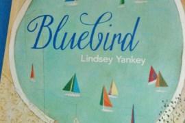 Publisher Spotlight: Bluebird @simplyreadbooks
