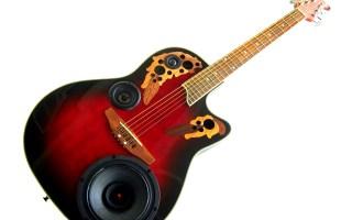 Guitar BoomCase Built in Speaker Amplifier