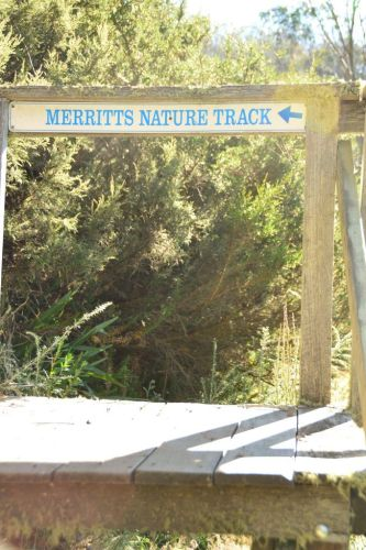 sign to merritts nature track mount kosciuszko sydney weekend getaways