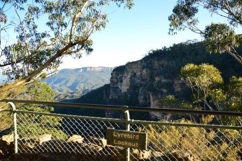 the view from Lyrebird lookout things to see in the blue mountains