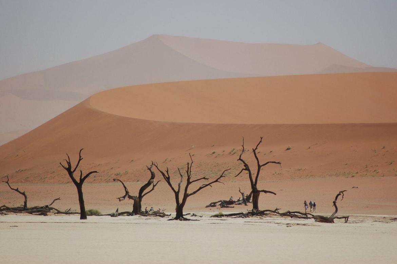 Dead Vlei Sossusvlei Namibia