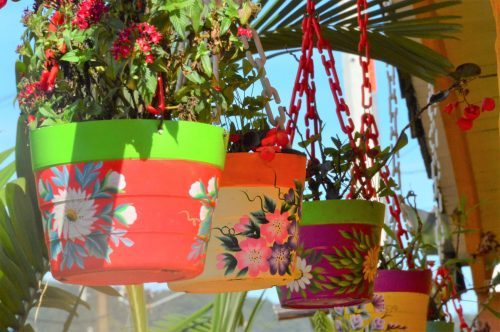 colourful hanging pot plants with flowers guatape