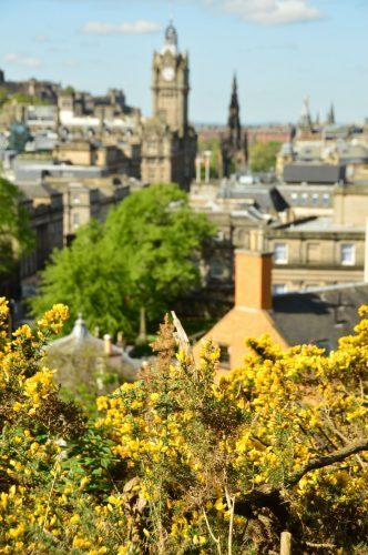 tours in edinburgh scotland