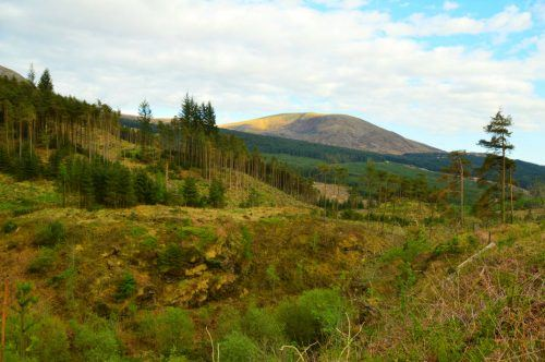 things to do in dumfries and galloway