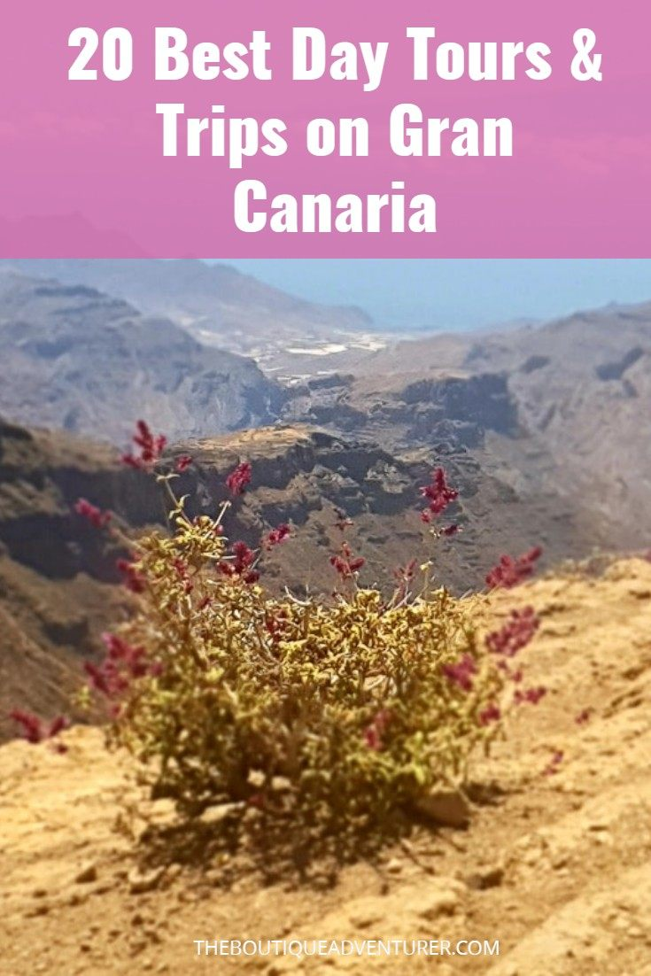 Gran Canaria has so much to offer! It is so much more than just a beach and drinks destination! Find out all about the 20 best Gran Canaria Excursions here #canaryislands#canaryislandsgrancanaria#canaryislandstour#canaryislandstravel#canaryislandsthingstodo#grancanariathingstodo#grancanariamaspalomas#grancanariatours#grancanariatips#grancanariafood#grancanariawine#grancanariawater#grancanariafood#grancanariahiking