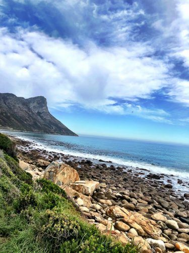 whale road south africa