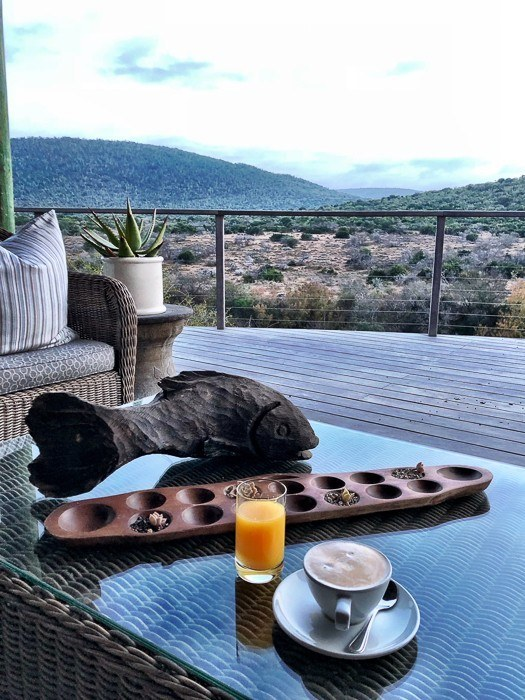 coffee and juice on coffee table looking out onto the wilds of africa