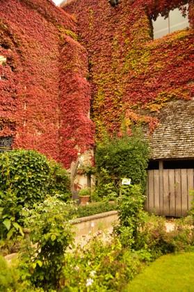 england_winchester_great-hall-garden