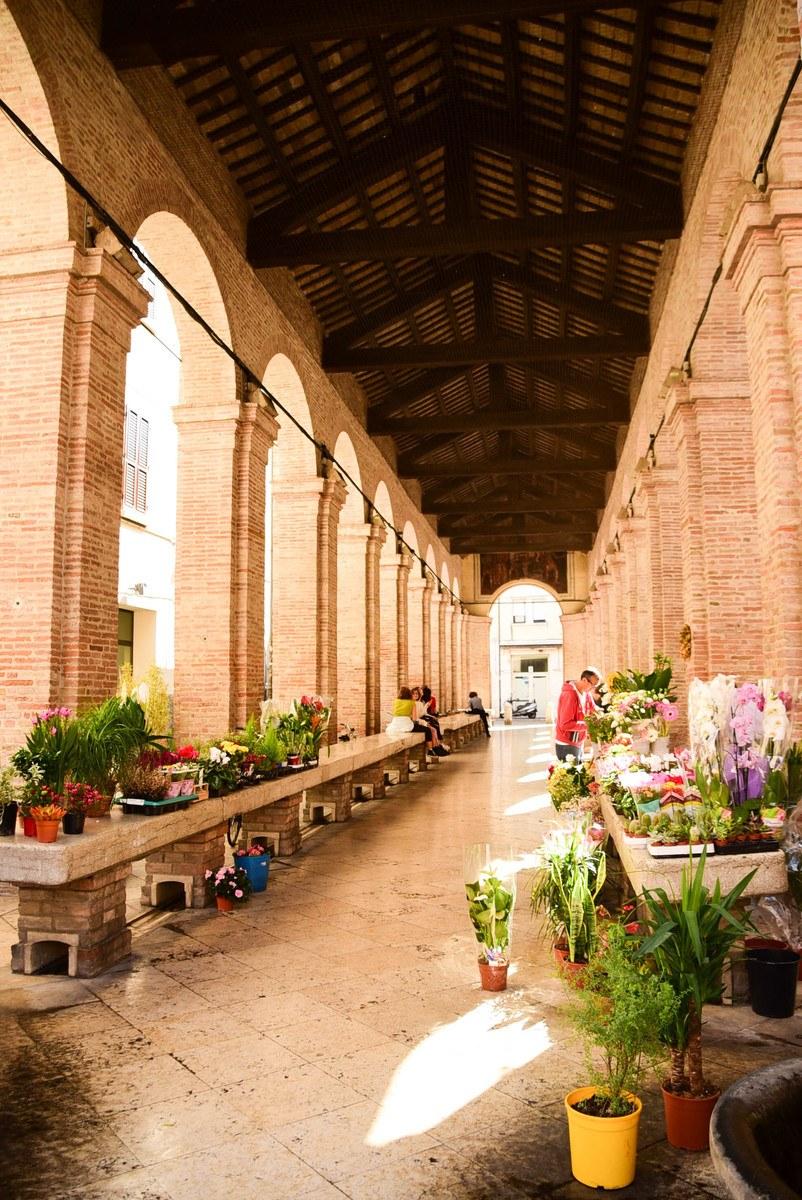 Italy_Rimini_market