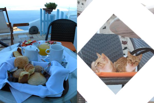 Breakfast at Tabby's...