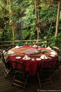 Rainforest dining