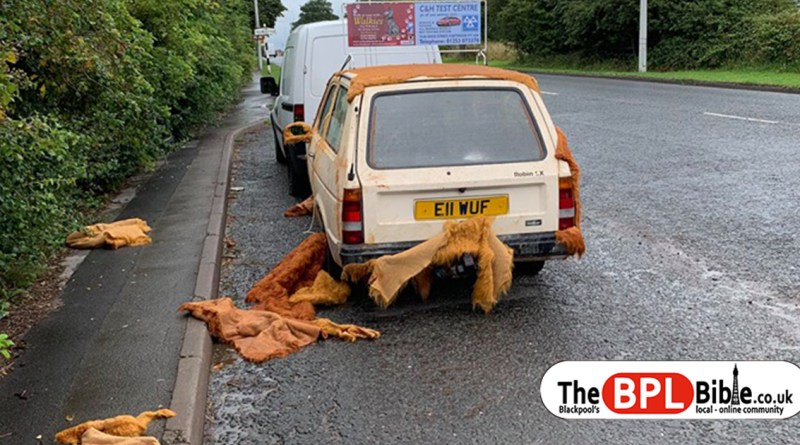 Vandals rip faux fur from Walkies Blackpool dog car