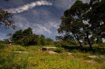 Josh in Harriman State Park