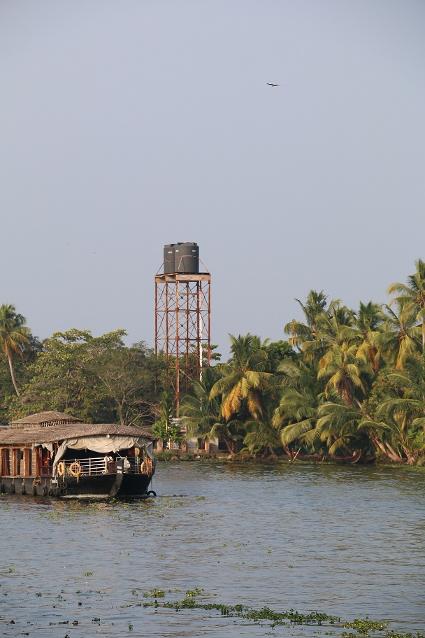Backwaters_12