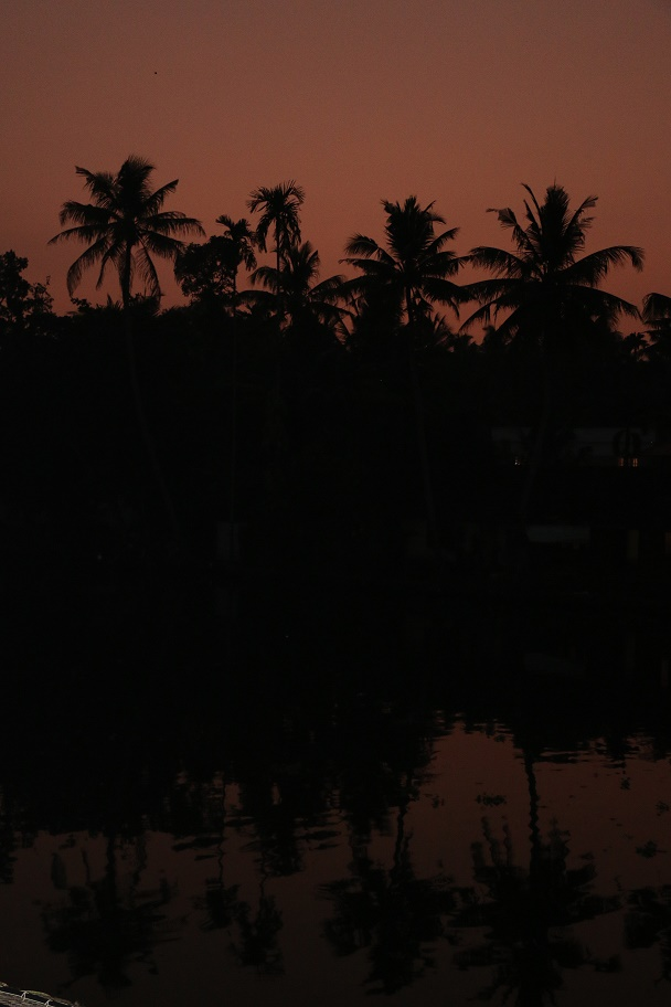 Backwaters_23
