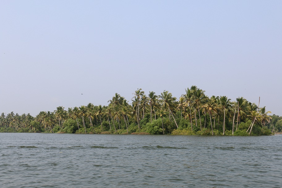 Kovalam_Backwaters_5
