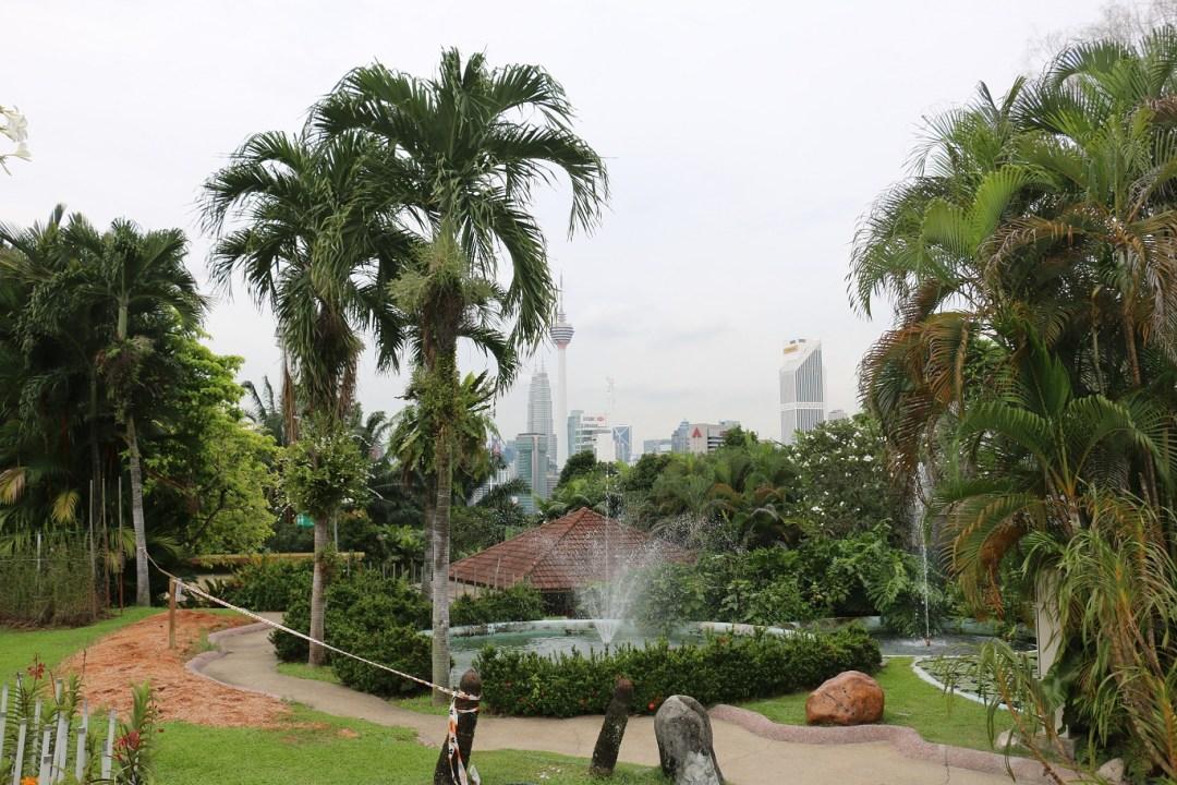 Kuala_Lumpur_Orchid_Garden_thebraidedgirl