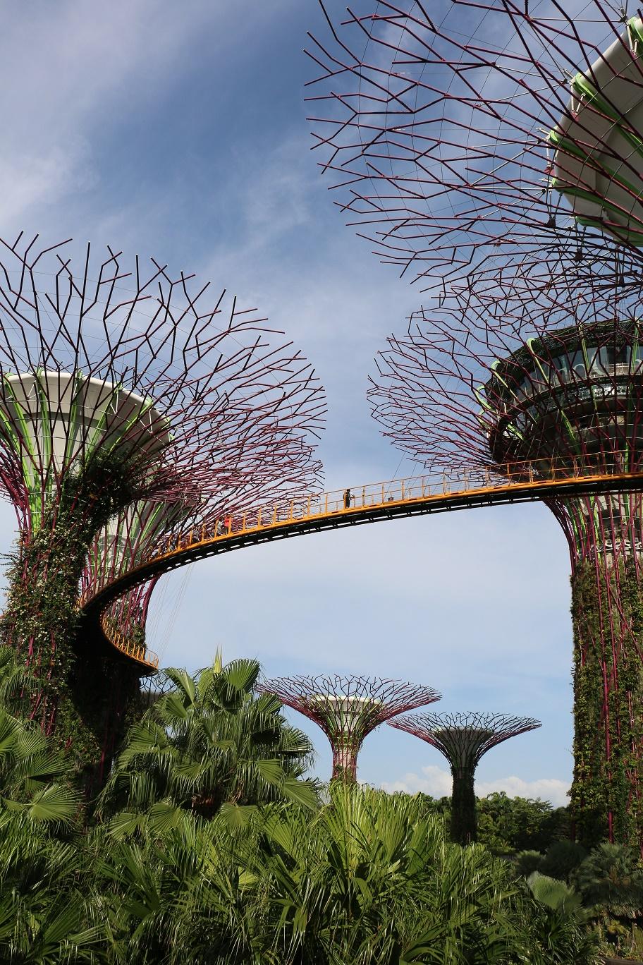 Singapur_Gardens_By_The_Bay_3_thebraidedgirl