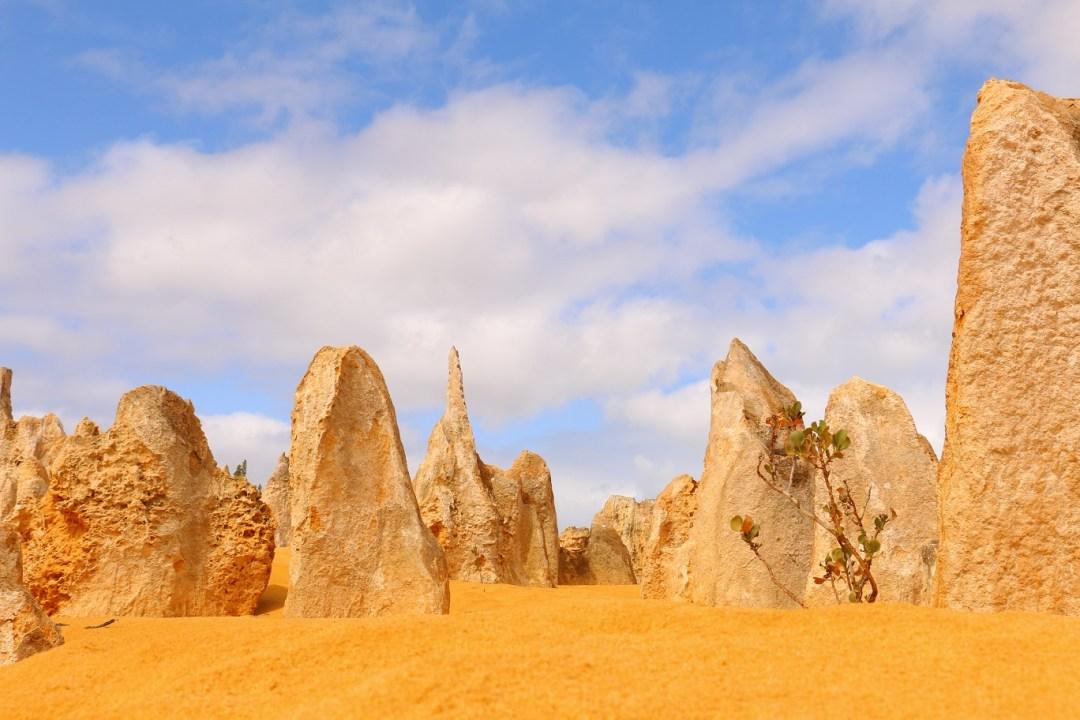 pinnacles-desert-3-thebraidedgirl