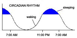 Tool Module: Sleep Regulation and Circadian Rhythms: A Two