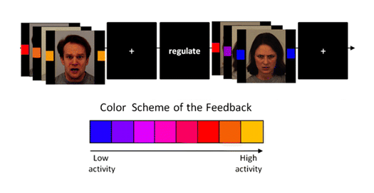 The task and the colour scheme of the feedback on the activity in the amygdala.  Brühl, AB. et al. (2014) Real-time Neurofeedback Using Functional MRI Could Improve Down-Regulation of Amygdala Activity During Emotional Stimulation: A Proof-of-Concept Study. Brain Topography 27:138–148.