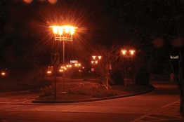 Figure 2. Direct light pollution. These street lights in Atlanta radiate light across a wide area, stargazing near these will be very difficult. Image taken from http://www.darkskiesawareness.org