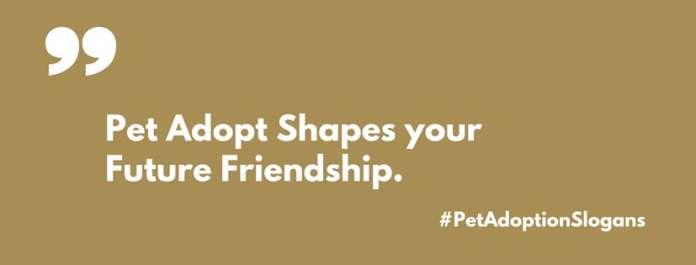 pet adoption slogans