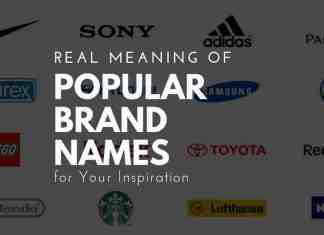 meaning of popular brand names