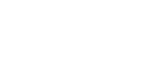 The Brandingeers