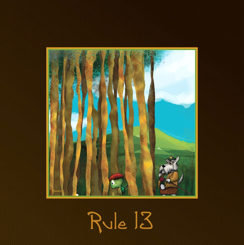 Rule13 01 1