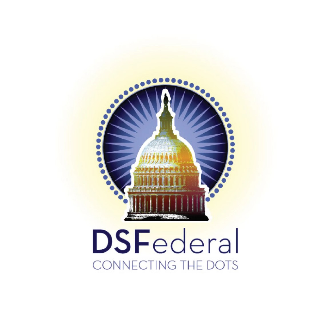 DSFederal - Connecting The Dots Logo