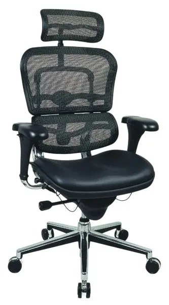 Ergohuman Mesh Executive Office Chair - Aweome Desk Chairs For Gaming