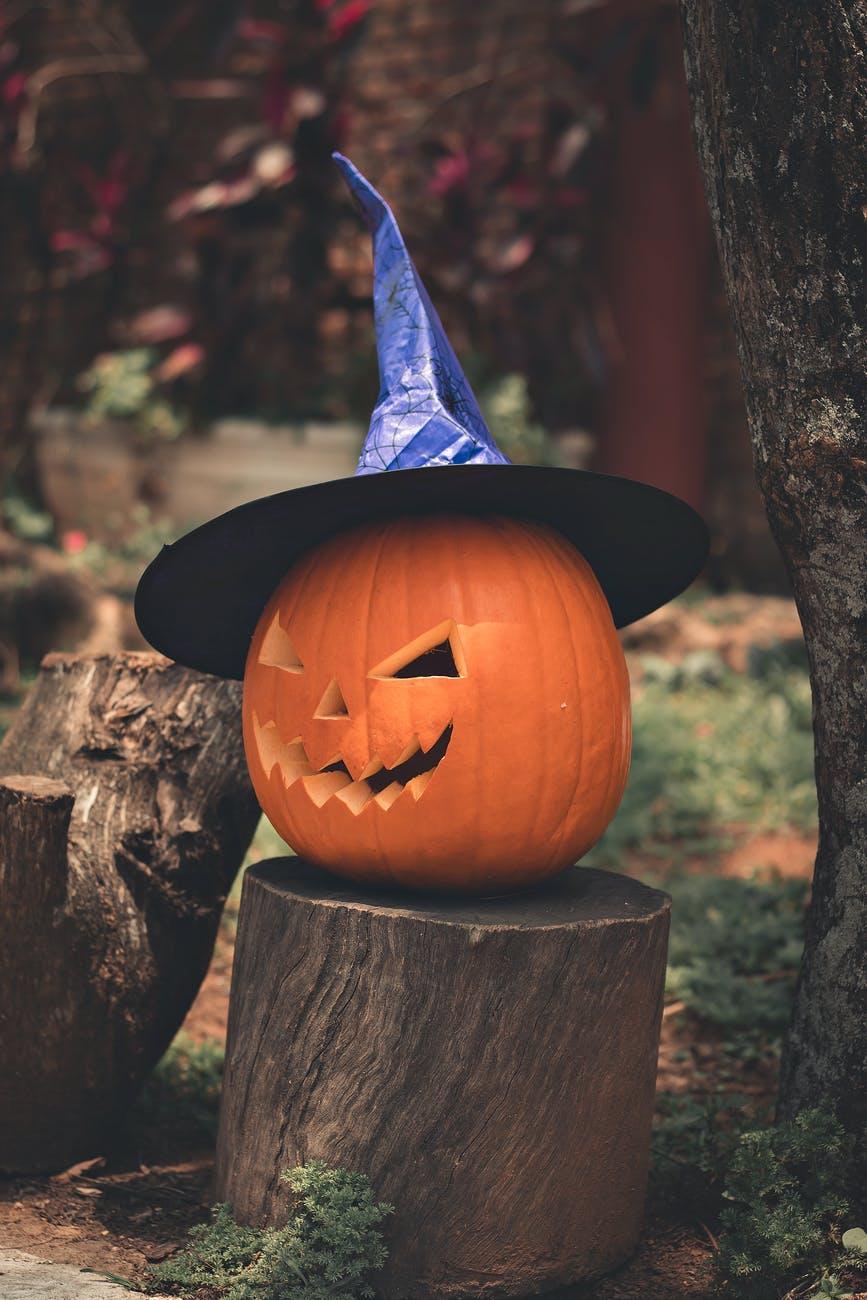 jack o lantern on brown wooden log
