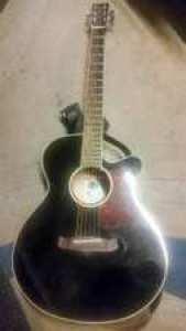 Tanglewood Winterleaf guitar