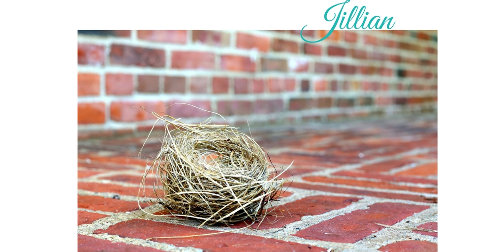 jillian_nest_holiday