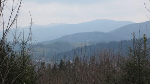 A Sudden Vista