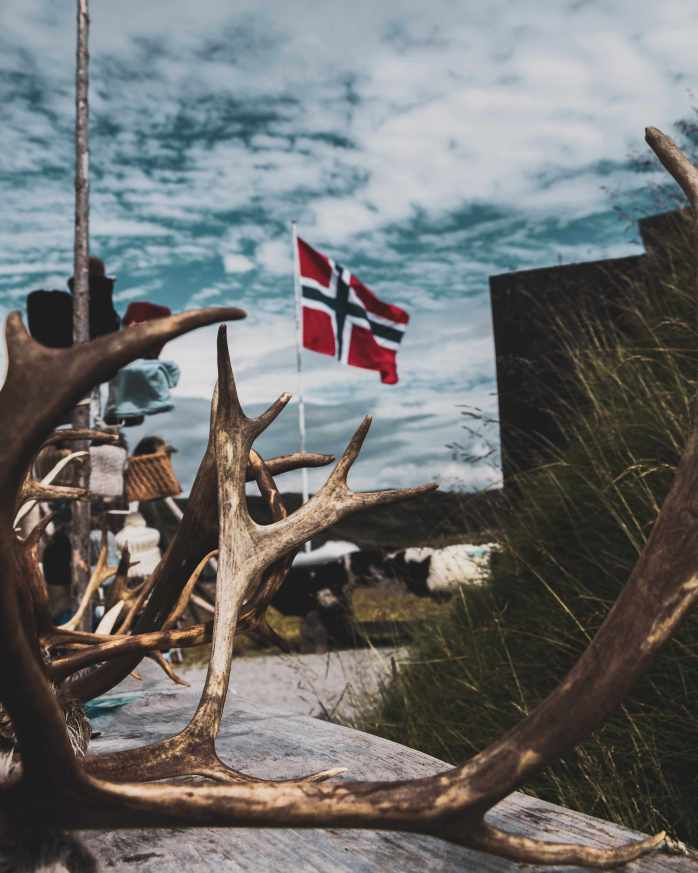 Norwegian flag; reindeer; Hallingskarvet; Norway; Norwegian; Nordic; Europe; family travel; travel;
