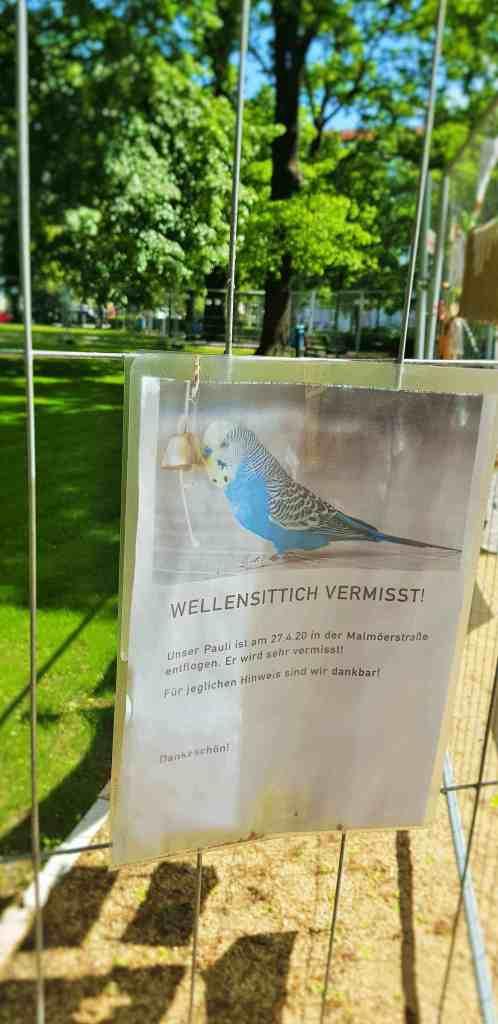 Victoria Ade-Genschow; The British Berliner; This is my Berlin; in Berlin; in Prenzlauerberg; Arnimplatz; Wellensittich vermisst; missing budgerigar; Wellensittich; budgerigar; budgie; vermisst; missing budgie; missing; bird; Prenzlauerberg; Prenzlauer Berg; Berlin Prenzlauerberg; Berlin; Germany; travel; Europe;