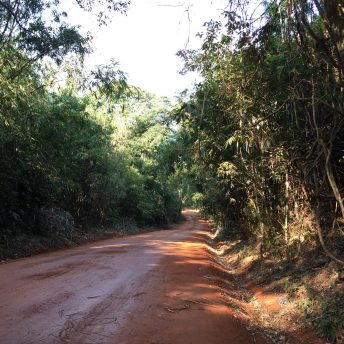 Red dirt road at the entrance of the national park