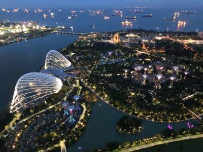 Gardens By The Bay at night. View from Marina Bay Sands Sky Deck, Singapore