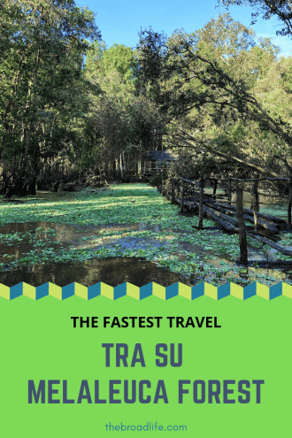 Pinterest Board of The Fastest Trip to Tra Su Melaleuca Forest - The Broad Life