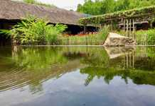 a pool in Thap Ba Hot Springs - Nha Trang mud bath & mineral bath