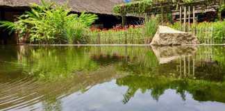 a pool in Thap Ba Hot Springs - Nha Trang mud bath & mineral bath