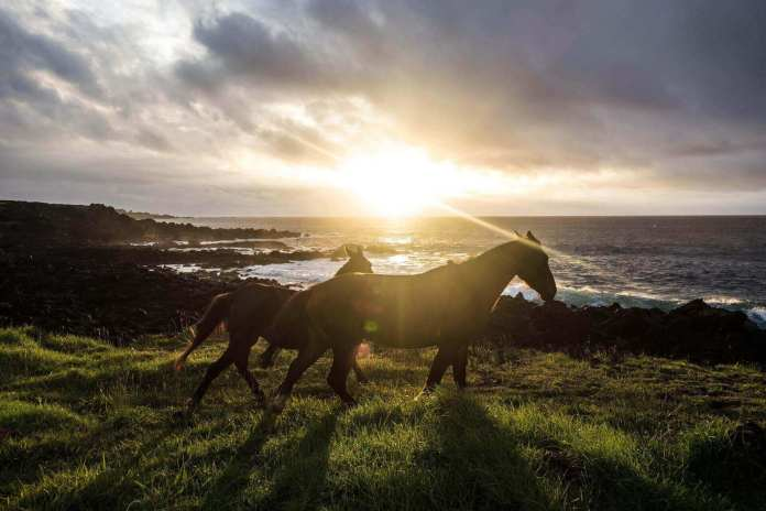 Horses in Easter Island, Chile, one of the adventurous places