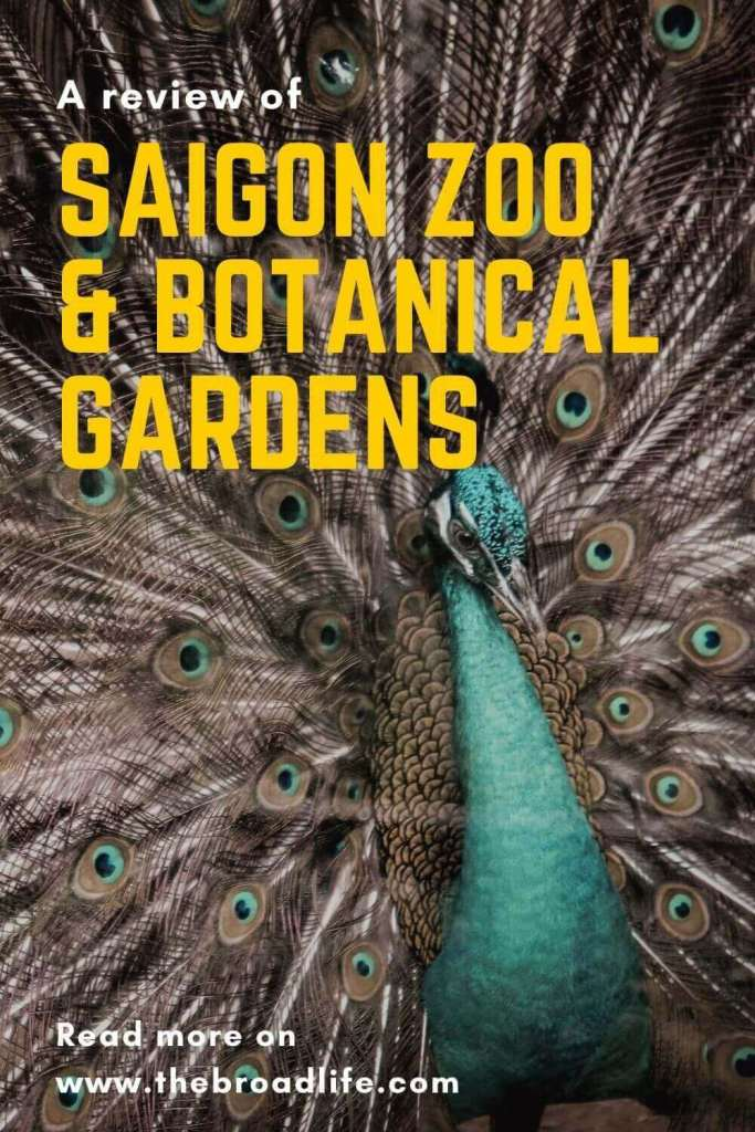Saigon Zoo and Botanical Gardens - The Broad Life's pinterest board